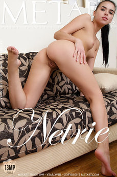 Netrie