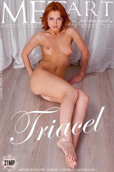 Triacel