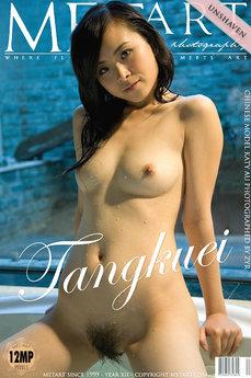 Tangkuei
