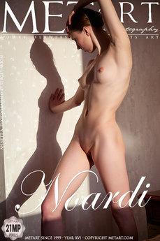 Noardi