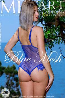 Blue Mesh