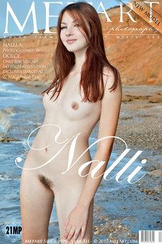 Presenting Nalli