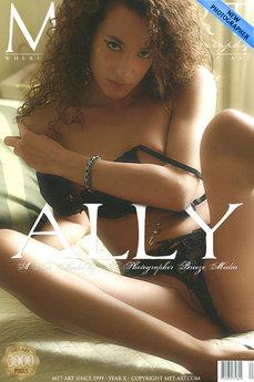 Presenting Ally