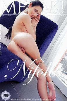 Nifolia