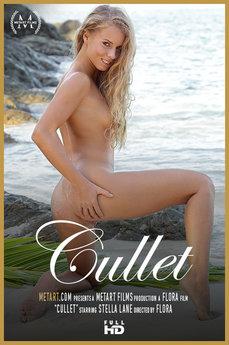 Cullet