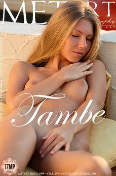 Tambe