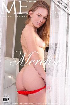 Presenting Merelin