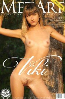Presenting Viki