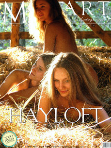 MetArt Multiple Model  Set Photo Gallery Hayloft Goncharov