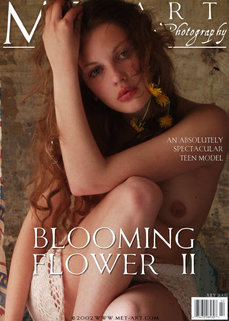 Blooming Flower Ii