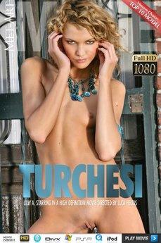Turchesi