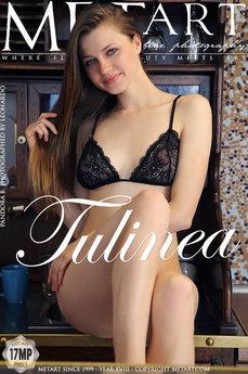 pandora-b_tulinea