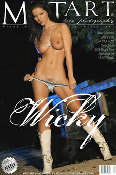 Presenting Wicky