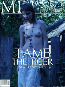 Tame The Tiger If You Can