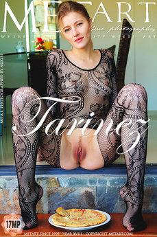 Tarinez