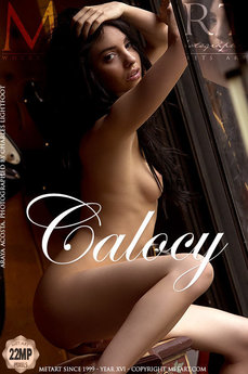Calocy