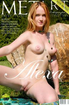 Presenting Alexa