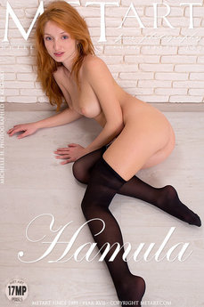 MetArt Gallery Hamula with MetArt Model Michelle H