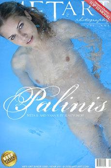 Palinis