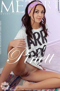 Pinett