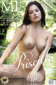 Presenting Priscilla