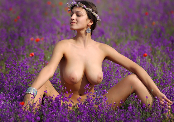 Sofi A: Anixi, by Goncharov, bare busty beauty in a field of flowers